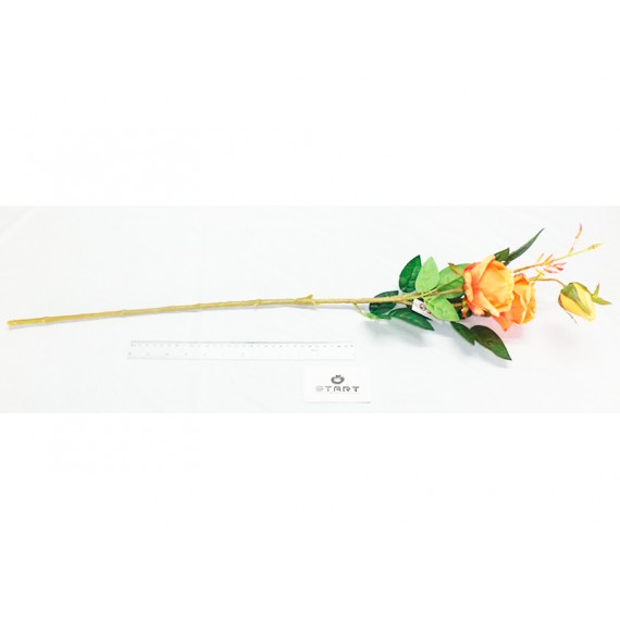 Flor Haste de Rosa, Unidade