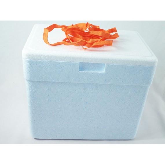 Caixa Térmica em Isopor 13 Litros com Alça